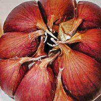 para que sirve el ajo, beneficios de comer ajo, propiedades del ajo, ajo y salud