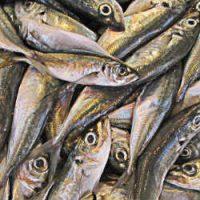 aceite pescado beneficios corazon, EPA salud, DHA salud, omega 3 beneficios